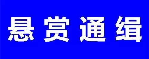 滑县警方发布悬赏通告